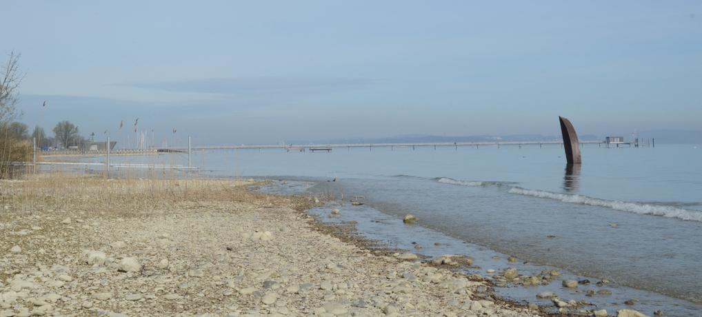 Seeuferreinigung 2018
